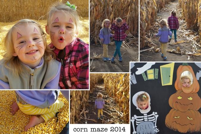 e&c_corn maze_14